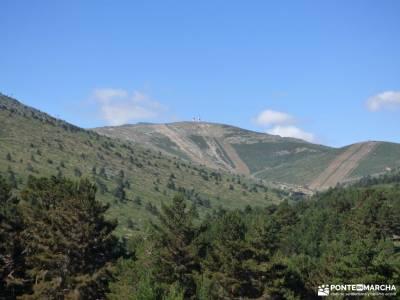Tejos Rascafría-Valhondillo o Barondillo;parque natural o invernadeiro la chorrera de los litueros